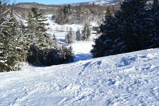 Vorlage Ski Area