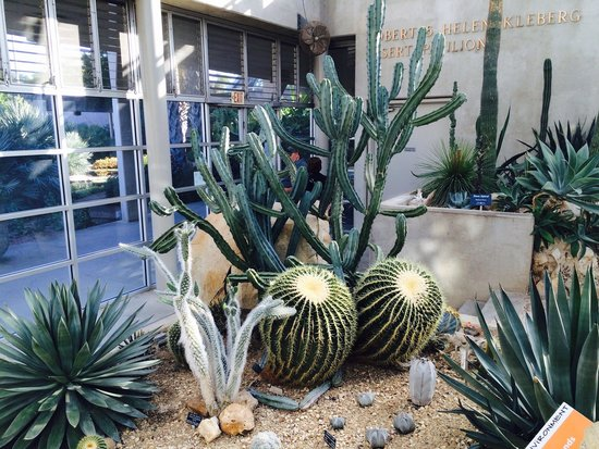 San antonio botanical garden picture of san antonio botanical garden