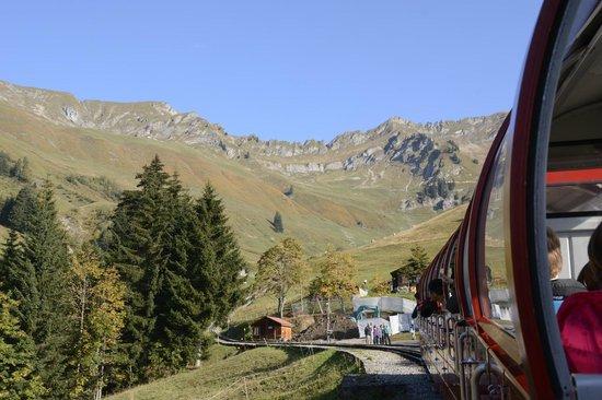 Brienz Rothorn Bahn : Near Planalp