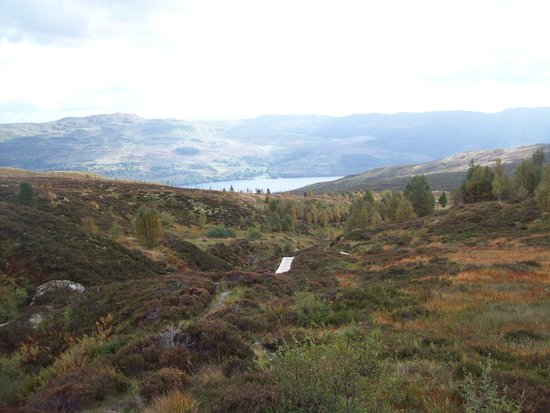 Ben Lawers National Nature Reserve: amazing views