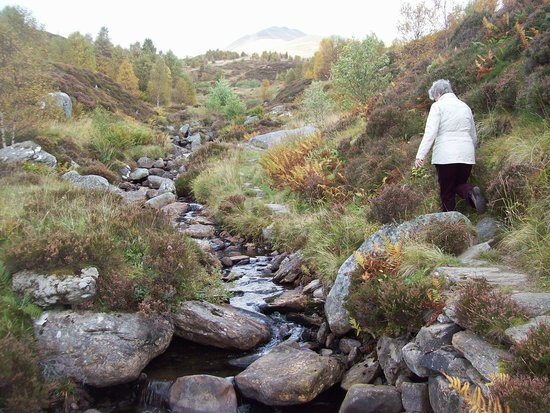 Ben Lawers National Nature Reserve: quite easy walking