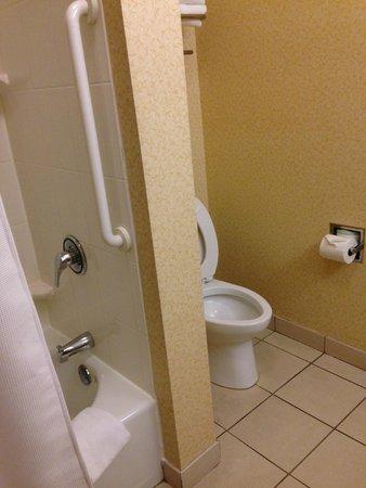Fairfield Inn & Suites Birmingham Fultondale/I-65: Clean Bathroom