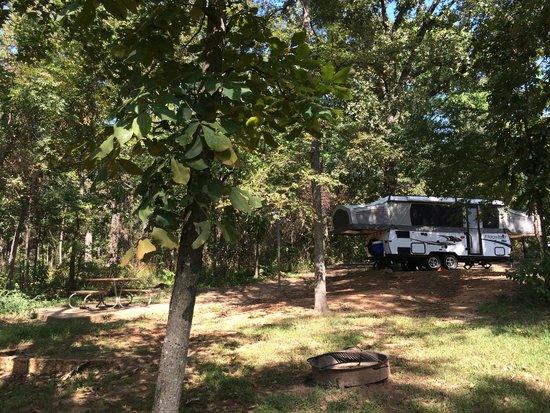 Nice deep campsites picture of lake bob sandlin state for Lake bob sandlin fishing report