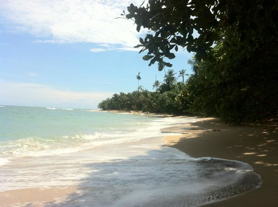Cabinas Punta Uva: Beach of the next bay