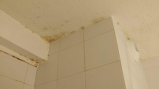 Hotel Ibis Faro: Bathroom was really dirty