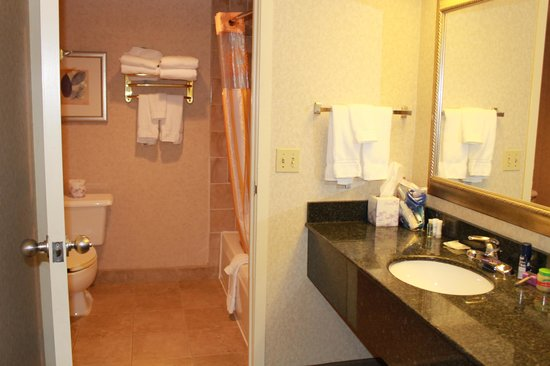 La Quinta Inn & Suites Hayward Oakland Airport: bathroom