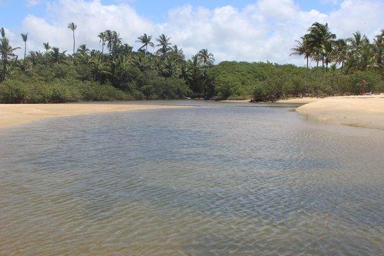 Rio da Barra Beach: Rio da Barra