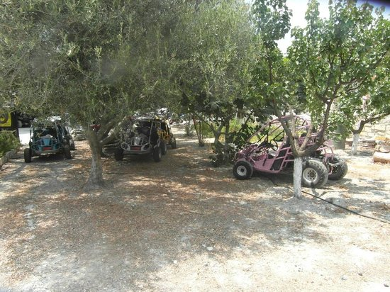 Sayious Adventure Park: A couple of the buggies available