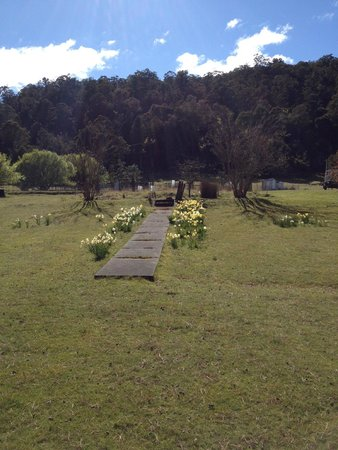 Waddamana, Australia: remanent gardens from 80 - 100 years ago