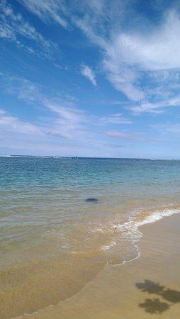 Hanalei Beach: Paradise found