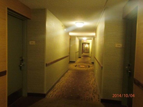 Hilton Garden Inn New York/Staten Island: Corridor