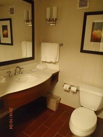Hilton Garden Inn New York/Staten Island: Bathroom