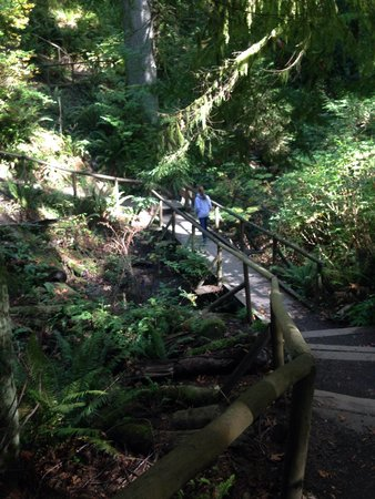 Priest Point Park: Trail bridge