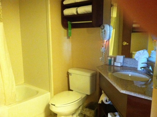 Hampton Inn Manheim : bathroom