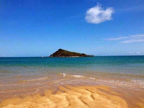 Airlie Beach Day Trips - Day Tours