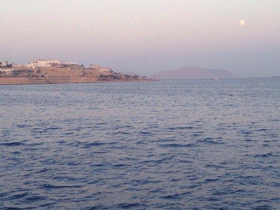 Sharm Safari Club: Heading back to port from Tiran Island snorkelling trip