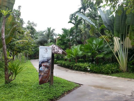 Centara Koh Chang Tropicana Resort: Olie massage kan varmt anbefales ;-)