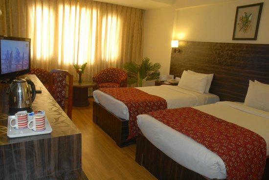 Hotel Vaishali: Twin Room