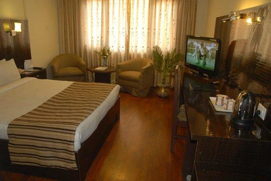 Hotel Vaishali: Deluxe room