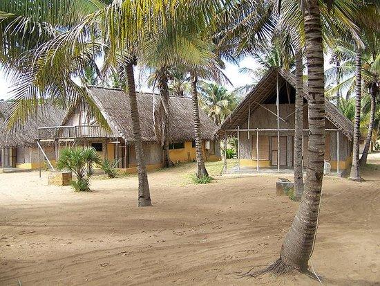 Palm Grove Lodge
