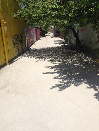 Dacha Maldives: Guraidhoo Village