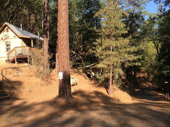 Yosemite Bug Rustic Mountain Resort: One of the cabins