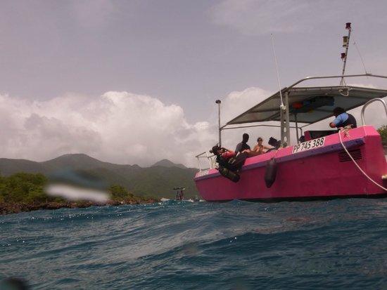 Centre De Plongee Des Ilets: Le bateau rose bonbon Krema du centre des ilets