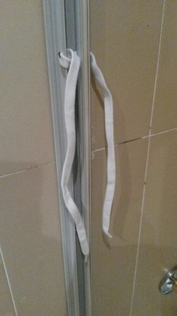 Hotel Alvalade : How to tie a shower curtain