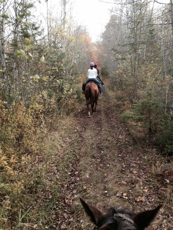 The Lords Ranch Ministry : Trail ride
