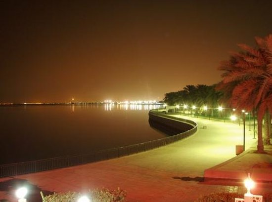 Al Jubail, Arabia Saudita: Fanateer beach at night