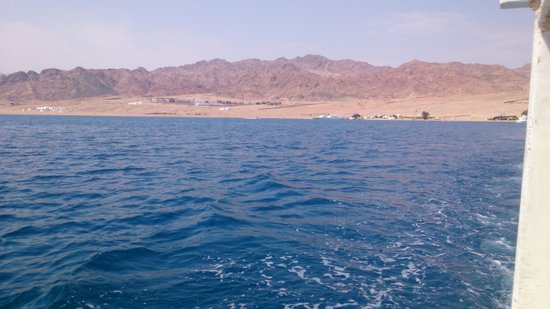 Jasmine Hotel & Restaurant: View across the Red Sea from the glass bottom boat