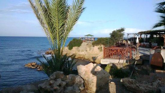 Horseshoe Beach Restaurant