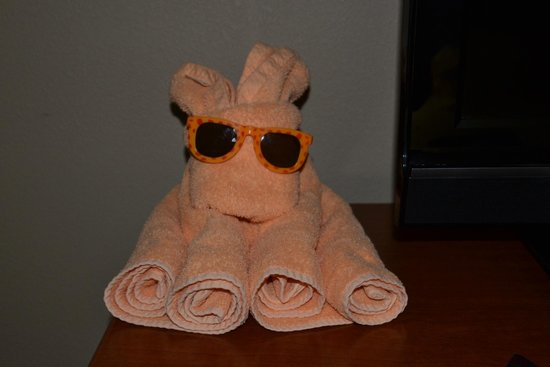 Hampton Inn Mitchell: Towel Art waiting for us in our room