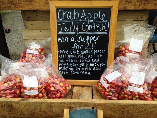 Crab Apple Jelly Contest