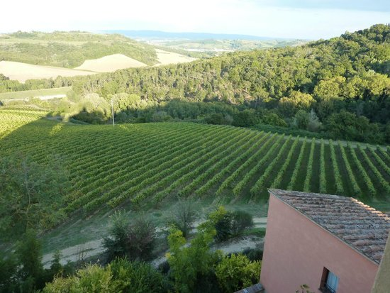 Il Borghetto di San Gimignano Agriturismo: Another view from the kitchen window