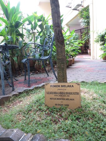 Hotel Puri: the court yard contains the melaka tree which city is named after