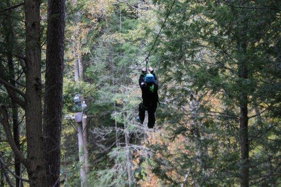 Foxfire Mountain Adventures: Foxfire Mountain Zip Lines