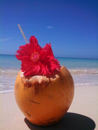 Island Pearl: Paradise
