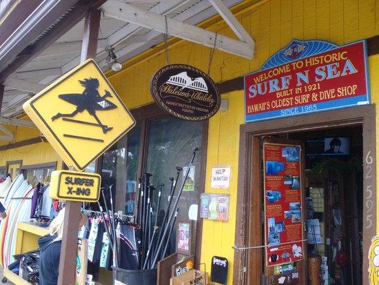 Surf N Sea: Great variety