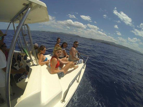 Samara Adventure Company: Dolphin Safari & Snorkeling