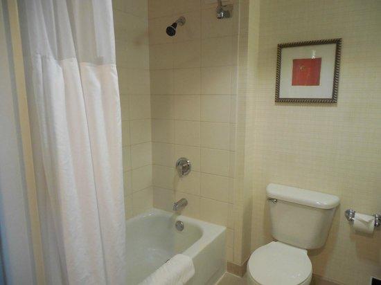Hilton Santa Clara : shower/tub