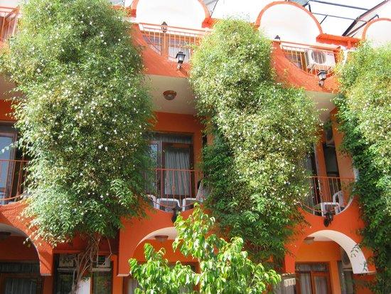 Britannia Hotel : Главный корпус: оранж и зелень