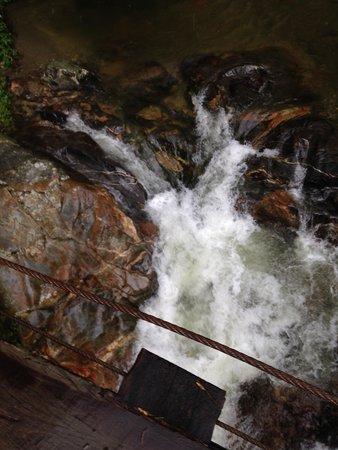 Sierra Nevada de Santa Marta : Een woeste rivier, gefotografeerd vanaf een gammel bruggetje.