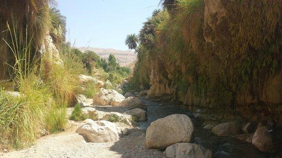 Best online resume writing service jordan river valley