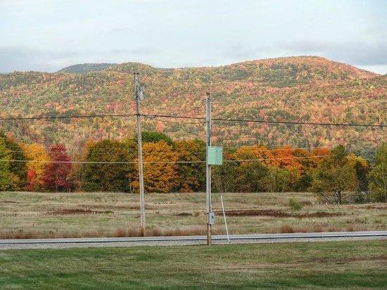 Valley Brook Cottages : uitzicht