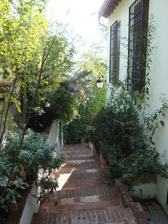 Almanzora Apartments Granada : jardin