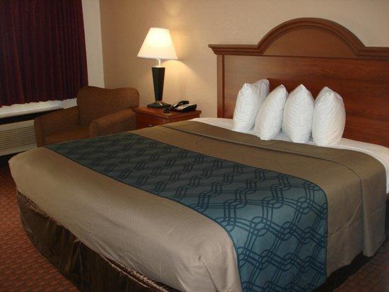 Econo Lodge Inn & Suites: King