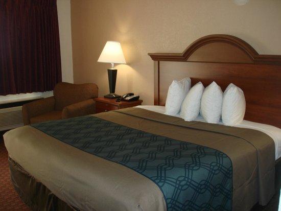 Econo Lodge Inn & Suites: .