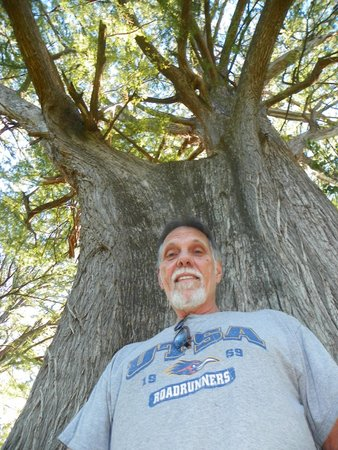 husband under the Largest Tree in Texas!