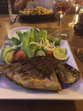 Sefin Yeri Restaurant : Sea Bass was absolutely delicious would recommend this place with friendly staff and a very well
